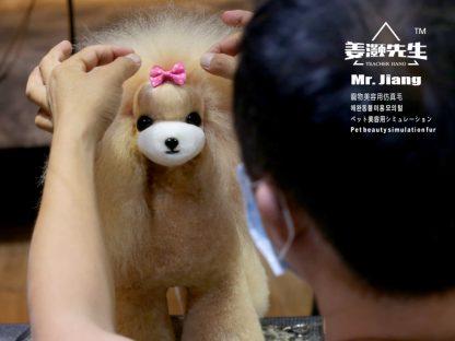 Mr Jiang Fell Teddy gold