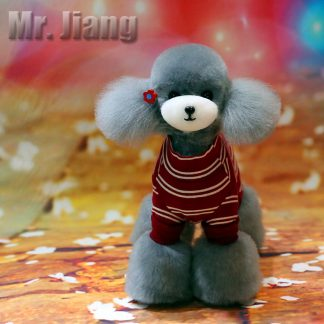 Mr Jiang Fell Teddy silber
